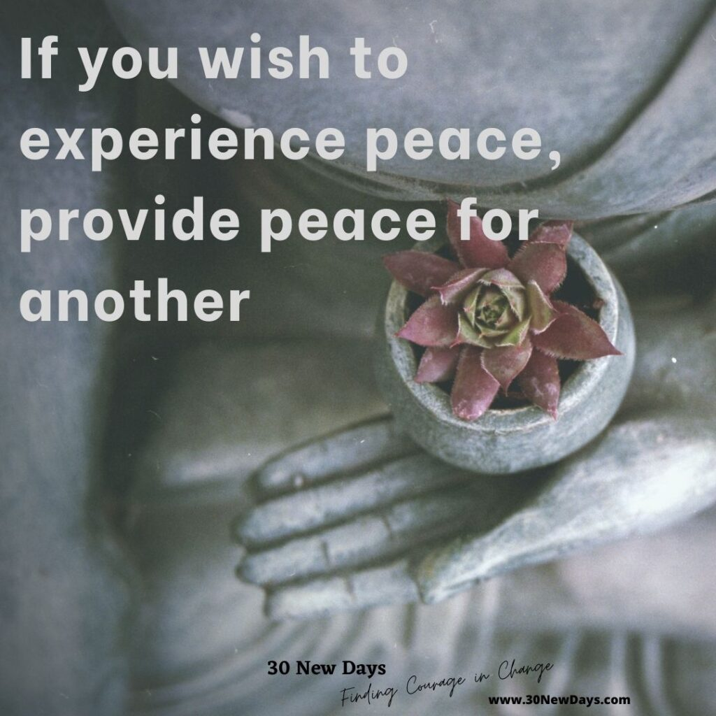 If you wish to experience peace, provide peace for another